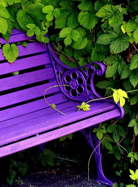 Paint garden benches bright colors. I want a purple bench!