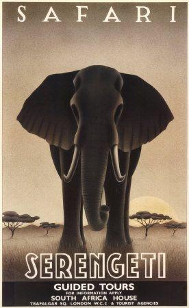 Serengeti Kunstdruk