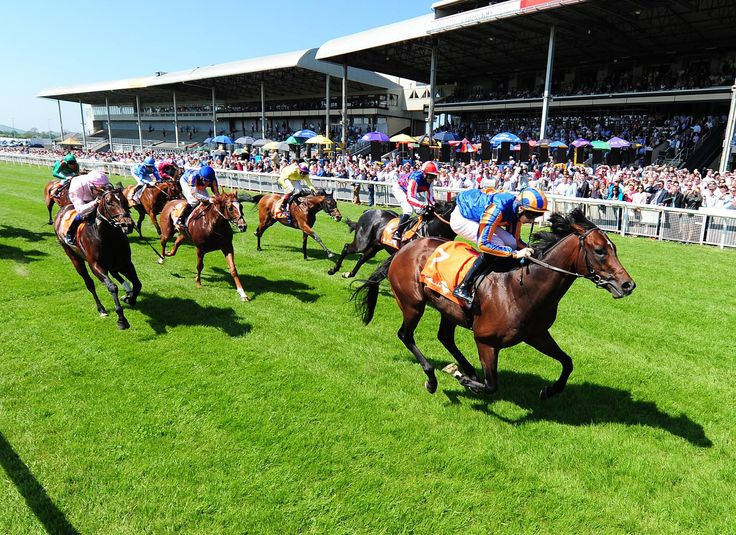 Enjoy a day at the Races at nearby Leopardstown Racecourse