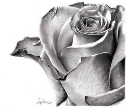BeautiFul Pencil SKETCHES By LINDA ~ My Fun Mails