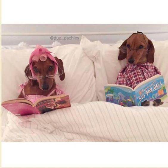 We Love Reading ♥♥