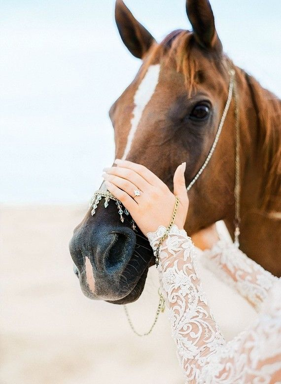 Arabian Nights Elopement
