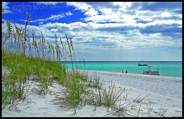Kings Bay Florida Shell Island