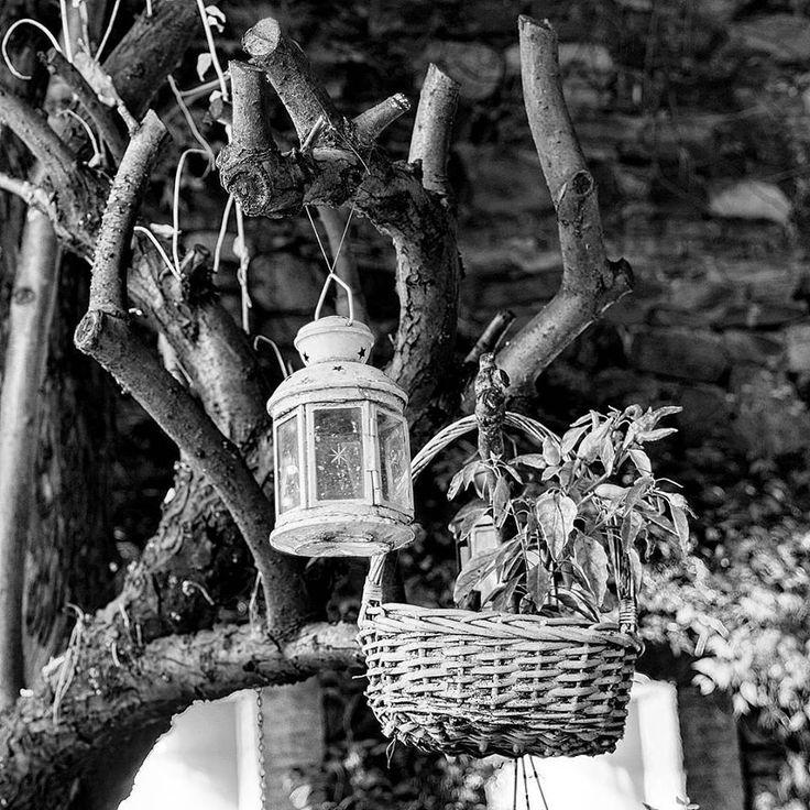 """""""Yüreğin kadardır hayat! Seviliyorsan renkli, seviyorsan siyah beyaz."""" #canyücel #bahçe #sonbahar #siyahbeyaz #blacknwhite #kitapeviotel #kitapevirestaurant #bursa #turkey Fotoğraf @ha_ay"""