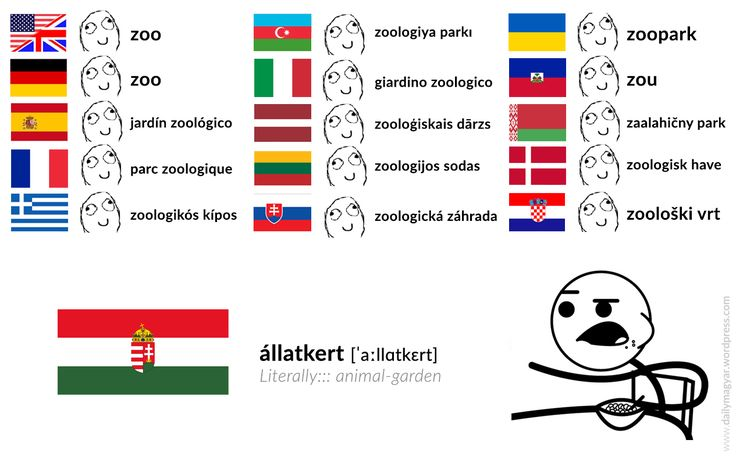 állatkert [ˈaːlːɑtkɛrt] (Literally::: animal-garden) https://dailymagyar.wordpress.com/2017/04/11/allatkert/ #Hungarian #language #meme #cerealGuy #zoo