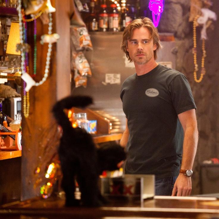 Sam Merlotte (Sam Trammell) I wouldn't mind if he were my boss.