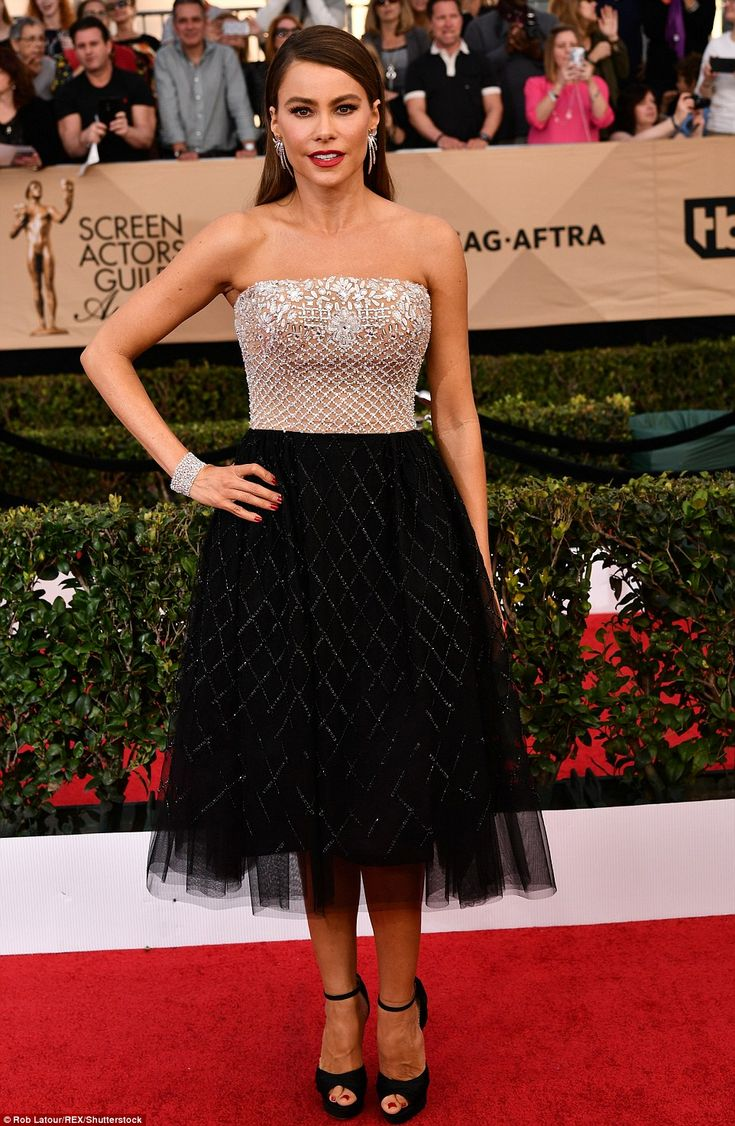 Poised to perfection: Sofia Vergara opted for prom dress chic with jewels in a Zuhair Mura...