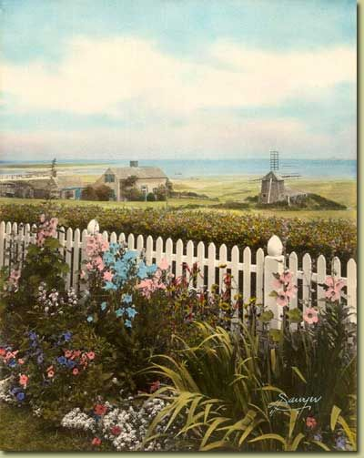 "From the archives of Chatham Historical Society:View from the backyard of Joseph C. Lincoln, looking toward Aunt Lydia's cove. The house and mill can still be seen at this location from Shore Road. (10 x 8"", hand-tinted, photograph by Sawyer). #lincoln, #josephlincoln, #chatham, #capecod, #atwoodhouse, #chathamhistoricalsociety"