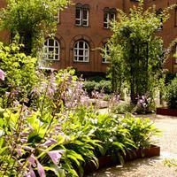 Københavns Rådhus & Garden