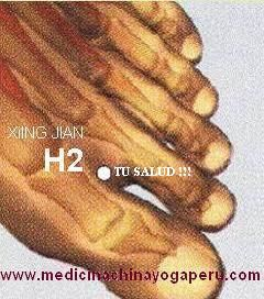El punto H2 es uno de mis favoritos para aliviar el hígado porque drena los estancamientos a lo largo del meridiano rápidamente. Su nombre es XING JIAN que significa INTERVALO ACTIVO. Los textos antiguos lo mencionan como el punto indicado para tratar la mayoría de enfermedades emocionales, indicado para la psicosis, tristeza, miedo, pánico, cólera, insomnio, hipertensión, regula el flujo menstrual. Hágase masaje con el dedo índice o pulgar en el punto H2, de los dos pies por dos minut