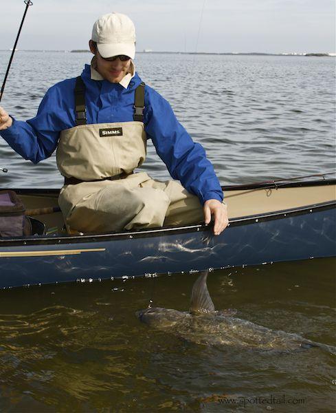 12 best black drum fishing near orlando images on for Fishing near orlando fl