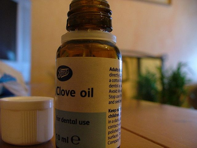 21 Remedies for a Toothache - Clove oil by Backdoor Survival, via Flickr