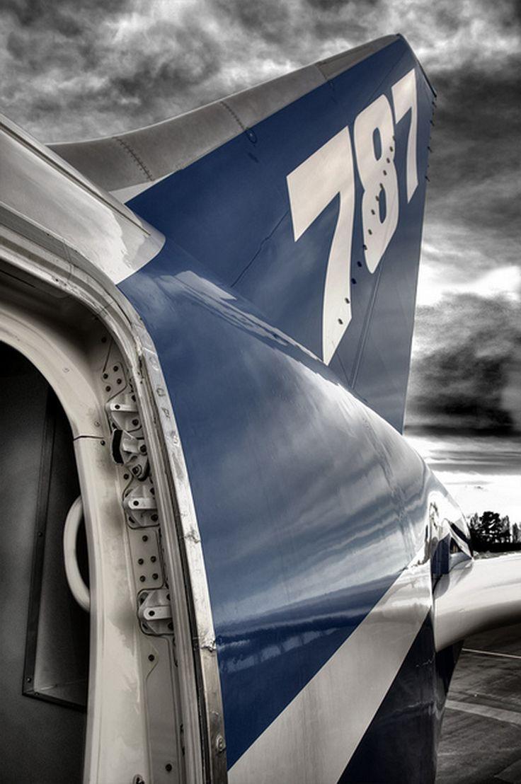 Boeing 787  http://aviationexplorer.com/