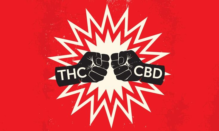 Quiz How well do you know your THC V CBD