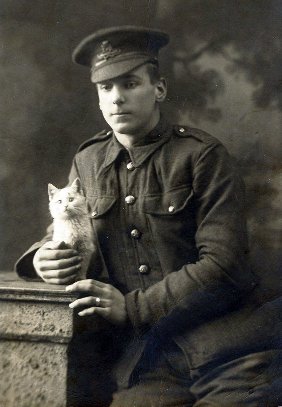 World War One, Unknown soldier, Royal Artillery. ww1photos .org
