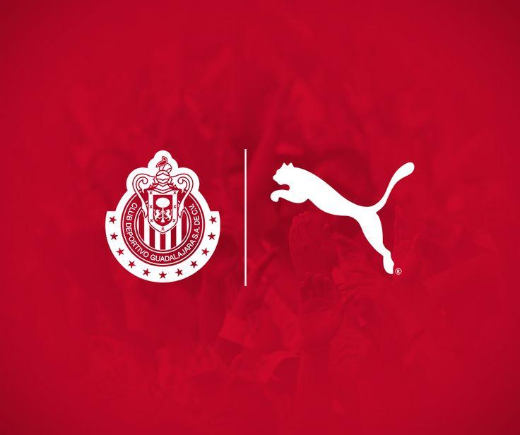 MARCA PUMA VESTIRÁ A CHIVAS Tras semanas de rumores, se da a conocer la marca que uniformará al Rebaño. La marca que uniformará al Guadalajara será presentada oficialmente el jueves 7 de julio, señala el CEO José Luis Higuera.