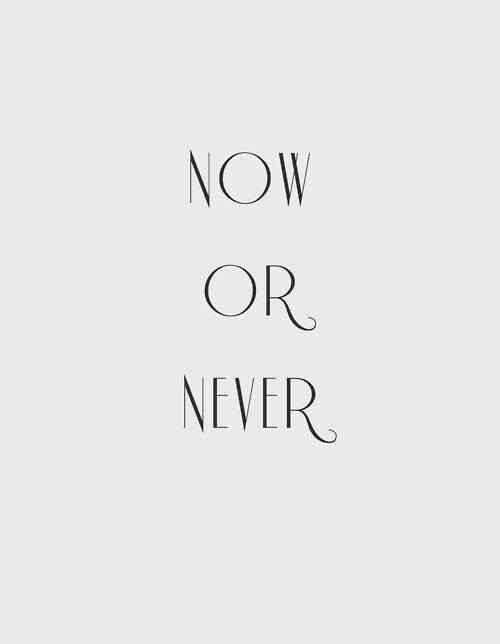 "Now or never  Great quote. I love the song ""Now or Never"" by Three Days Grace   :-)"