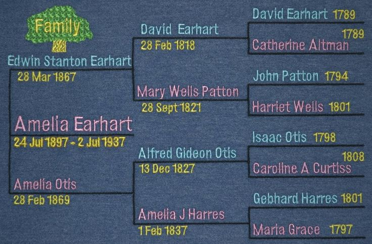 Amelia Earhart Family Tree Google Search Amelia