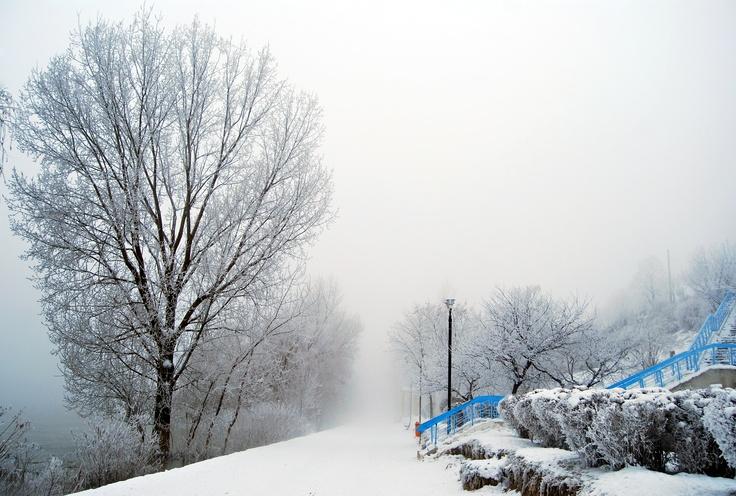 Cold blue winter - ©AdiZAINESCU
