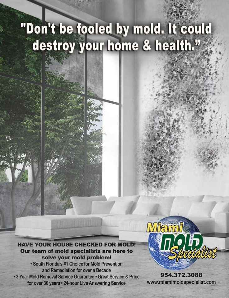 Mold is always caused by an #attendant #moisture or #water #problem, so we work quickly to determine the source of the water, then review and implement the plan to correct it.