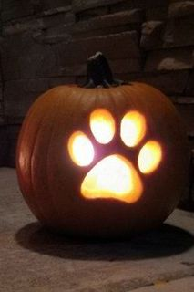 Pet Safety Tips for Halloween! - http://www.vetlocator.com/dailypaws/2013/10/pet-safety-tips-halloween/