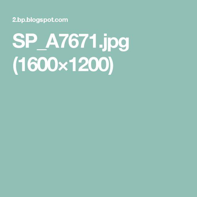 SP_A7671.jpg (1600×1200)