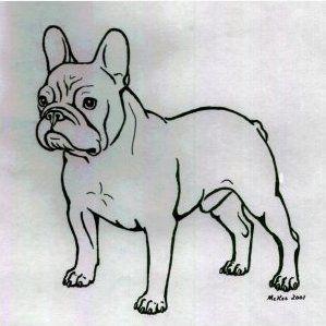 Analysis of the French bulldog - cilveekss jimdo page!