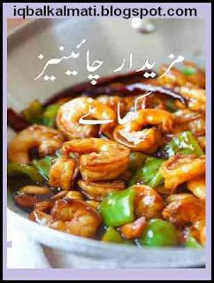 Chinese dishes urdu cooking book by shabela tariq free download chinese dishes urdu cooking book by shabela tariq free download forumfinder