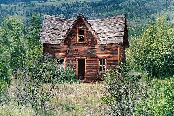 old,decay,decrepit,broken,rickety,beat-up, ramshackle, derelict, ruined,vintage,home,house,cabin,beauty,petrified wood,petrified,wood,rotten,rot,trees,nature,bushes,forest,hills,mountains,roof,window pane,grass,field,