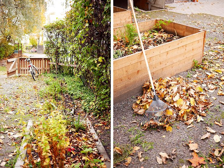 Autumn is here! tuulinenpaiva.fi