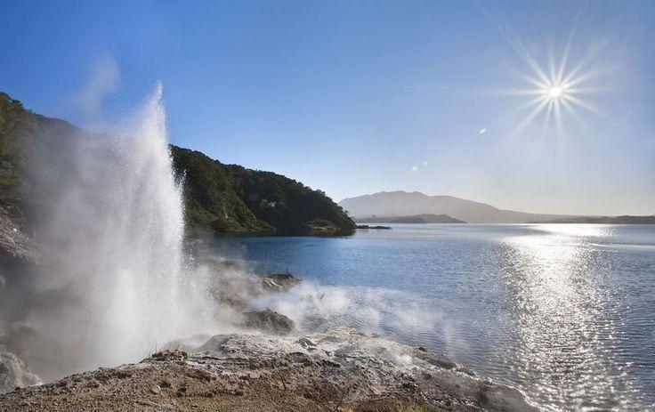 Geyser, Pink Bay in Waimangu Volcanic Valley #Rotorua #NewZealand http://www.mydestination.com/rotorua/things-to-do/177354/waimangu-volcanic-valley