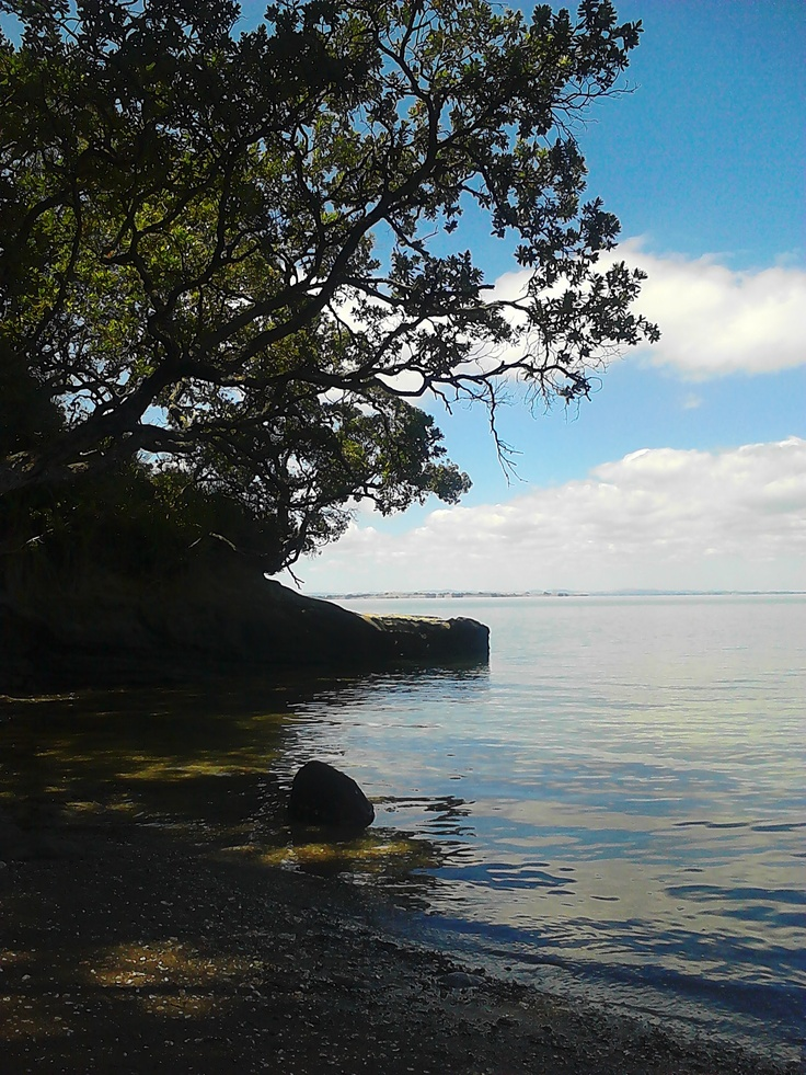 Otitori Bay, Titirangi, Michele Rumney, Feb 2013.
