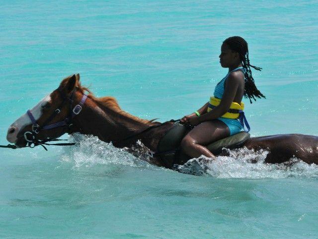 Horseback Riding Fort Lauderdale Beach