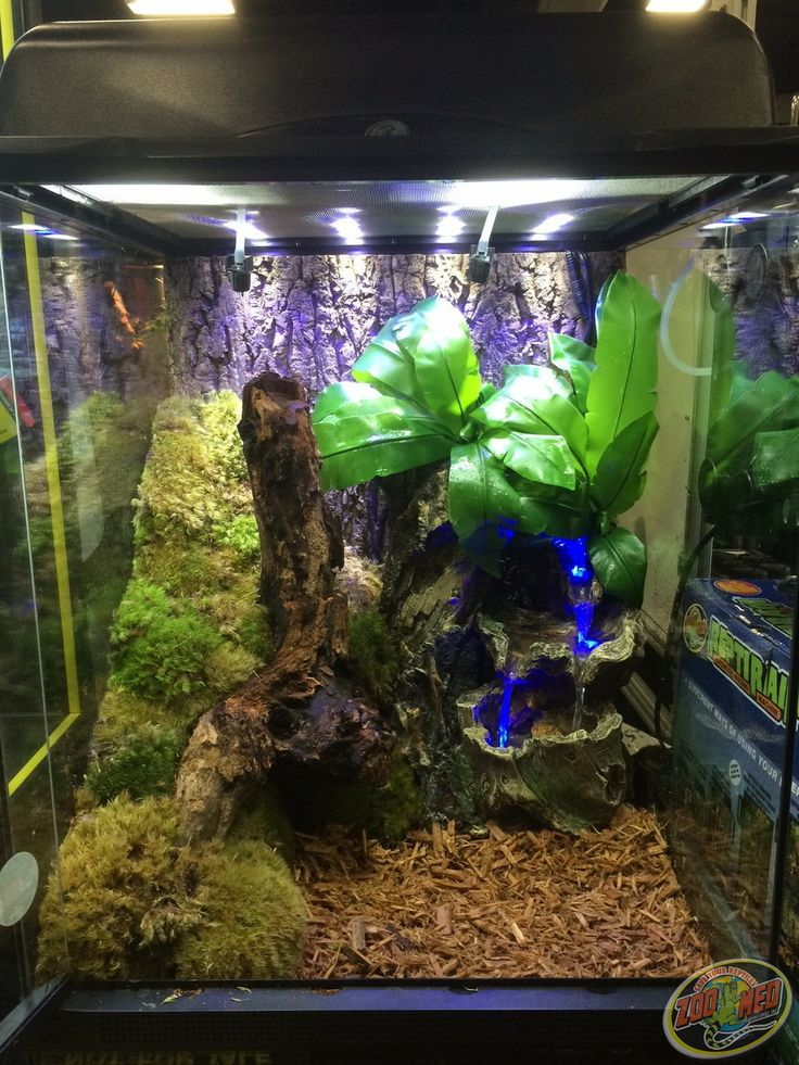 how to build a terrarium pdf