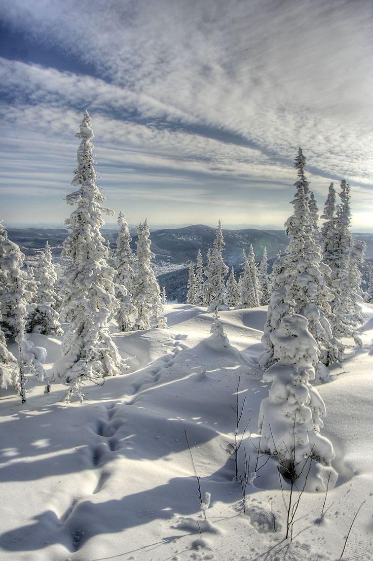 Russia, Siberia beautiful scene, snow, clouds, trees, beauty of Nature, beautiful, stunning, landscape, photo