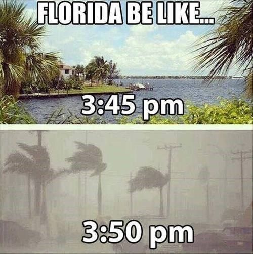 If I didn't know better, I would think someone was making this up. Summer weather: | 23 Things Everyone Who Lives In Florida Will Understand