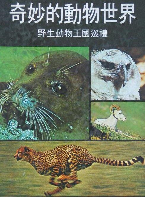 奇妙的動物世界 讀者文摘
