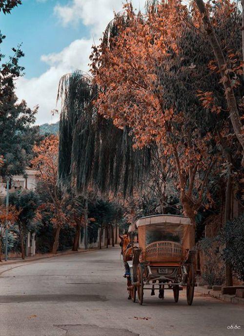 Adalar-İstanbul  By  Osman Topçu
