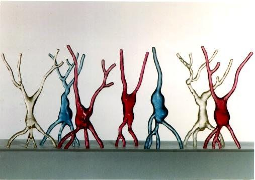 Organische vormen: vormen die geïnspireerd zijn op de natuur. Ze doen aan groeivormen denken. Neurons - Micki LeMieux Home