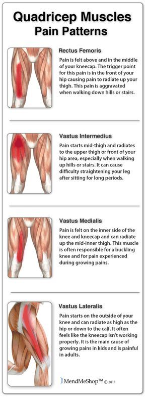 Thigh muscle pain symptoms can be mild to extreme based on the level of your injury. A sharp pain or pulling may be felt in the area of the pull, strain or tear. This can radiate along the length of your #quadriceps muscle up to your hip and pelvis, and/or down through your knee. #thighpain