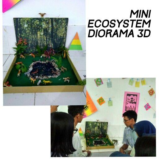 ✨Pertemuan 3✨Mini ecosystem diorama 3D
