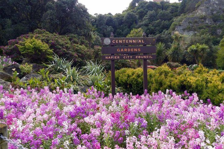 Centennial Garden, Napier: