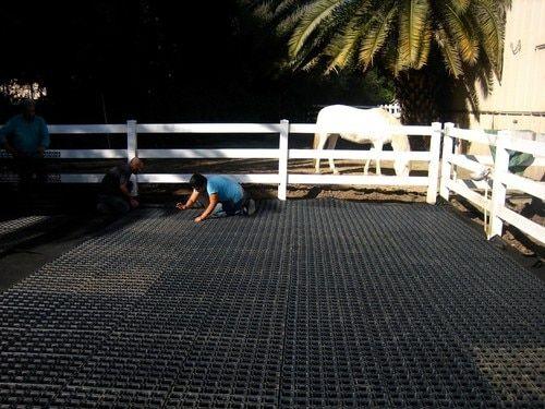 Drain Grid - Mud-Free Arena Base Construction | horses
