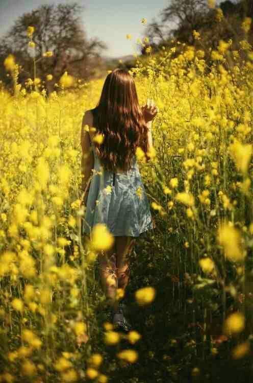 """""""Ich werde keine andere Blume sein, wegen meiner Schönheit gepflückt und dem Sterben übe…"""