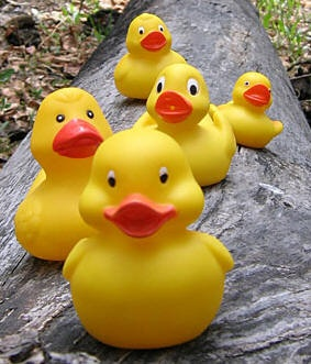 Love these! Have loved rubber ducks since I was little! Still do!