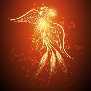 The phoenix; the firebird. It's a popular mythic creature for fantasy - beautiful, unnatural and filled with symbolism. But where did the myth come from?
