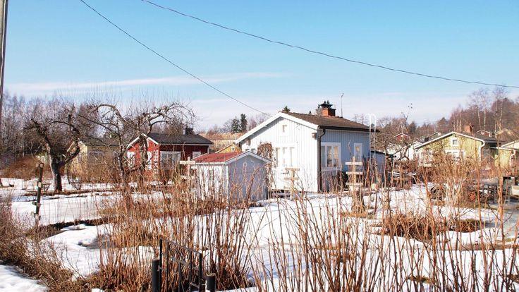 Tampere Raholan siirtolapuutarha