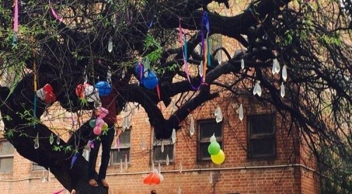 "Worshipping ""Virgin Tree"" Makes You Lose Virginity – A Bizarre Valentine Ritual"