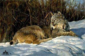 Briar Patch by Nancy Glazier