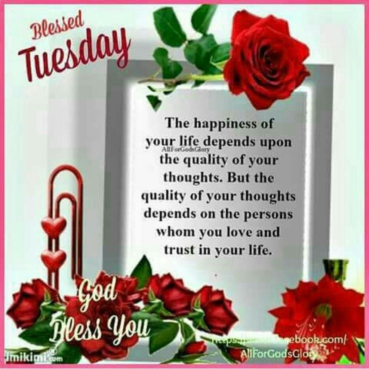 Blessed Tuesday